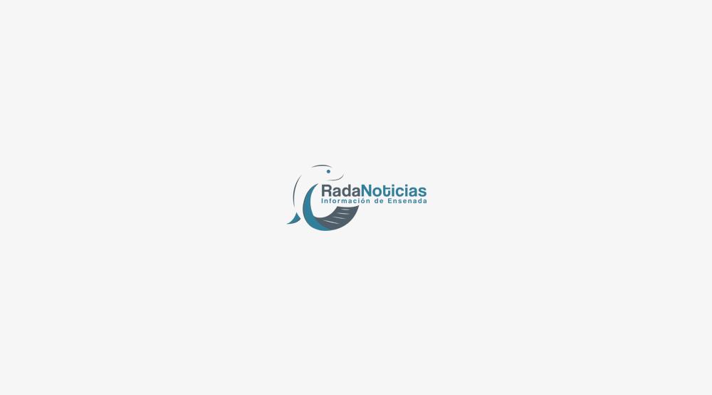 logotipo rada noticias