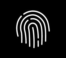 identidad de marca en Guadalajara