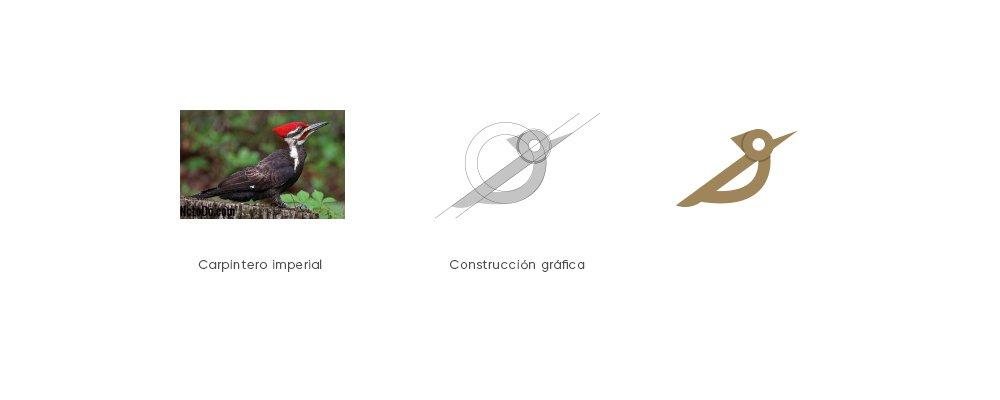 construcción logo carpintería