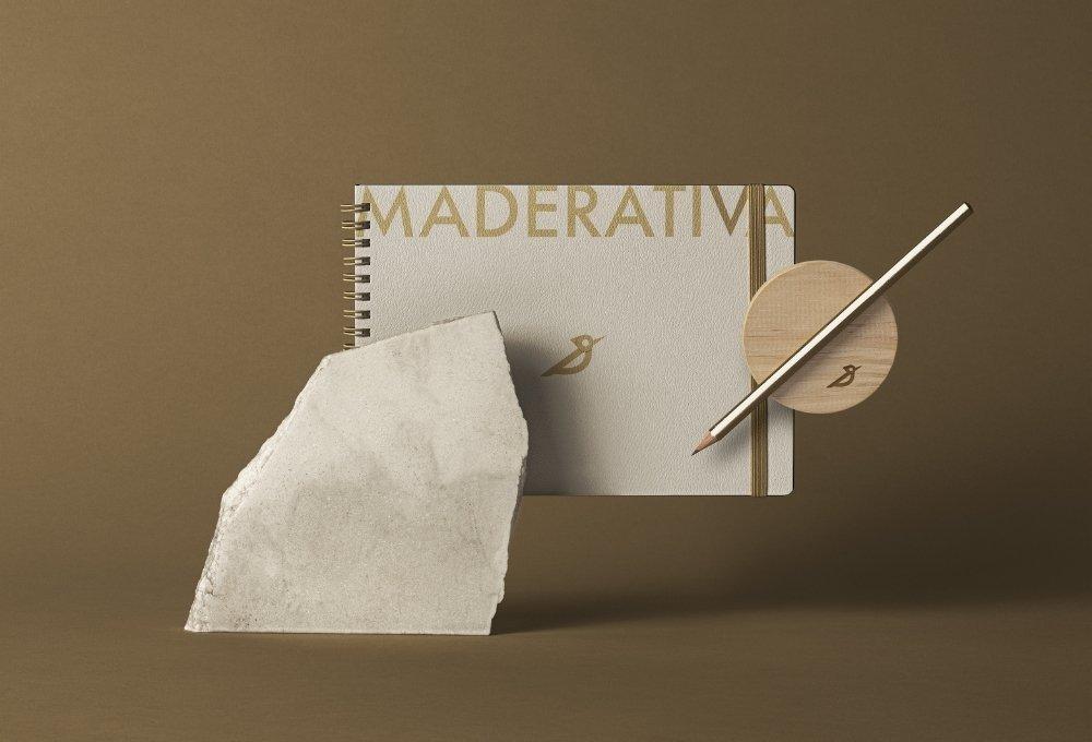 proyecto branding para carpinteria